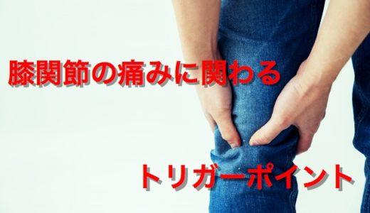 膝関節の痛みに関わるトリガーポイント【部位別まとめ】