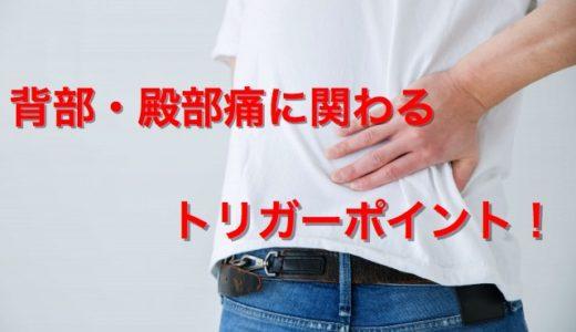 背部・殿部痛に関わるトリガーポイント【部位別まとめ】