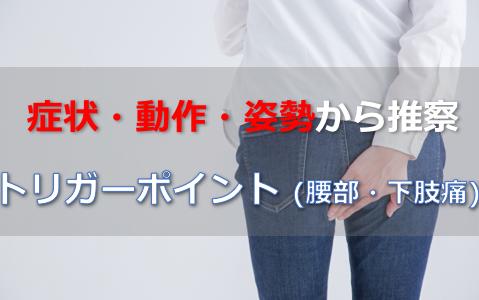 症状・動作・姿勢から推察する【腰痛・下肢痛に関わるトリガーポイント】
