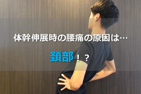 【腰痛のリハビリ】体幹伸展時の腰痛と頚部の関係