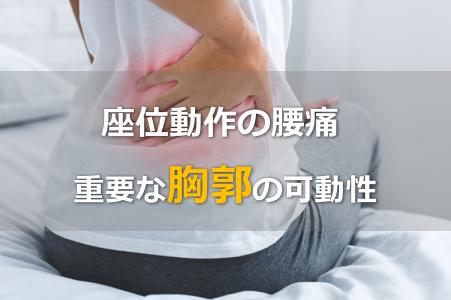 【腰痛のリハビリ】座位での腰痛の原因は胸郭の可動性が大切