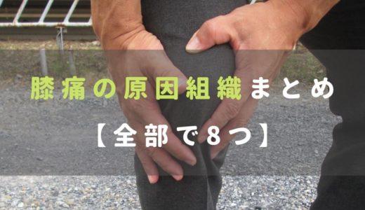 膝関節の痛みの原因になる組織まとめ【評価・アプローチに活かそう】